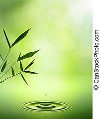 résumé, arrière-plans, bamboo., oriental, conception, ton