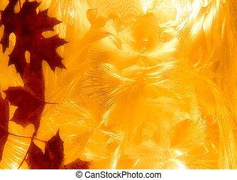 résumé, automne, fond, textured, orange part