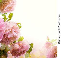 résumé, beau, rose rose, frontière florale, fond