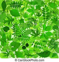 résumé, feuilles vertes, fond
