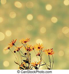 résumé, fleurs, étincelant, fond