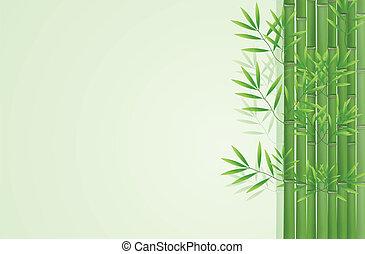 résumé, fond, bambou