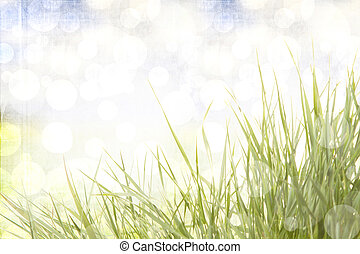 résumé, herbe, fond