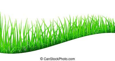 résumé, herbe, vert