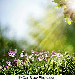 résumé, naturel, arrière-plans, à, beauté, fleurs