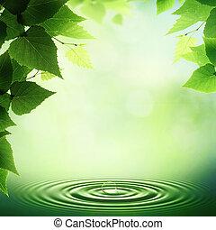 résumé, neutre, profond, matin, tôt, forêt, fond
