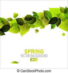 résumé, printemps, fond, floral