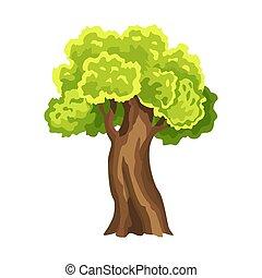 résumé, stylisé, arbre., illustration, vert, naturel, aquarelle, foliage., leafage., arbre