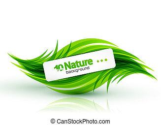 résumé, vecteur, fond, nature