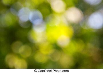 résumé vert, naturel, bokeh, fond