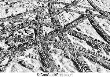 réteg, autó, hó, gumiabroncsok, sín, híg, először