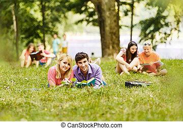 réussi, ensoleillé, parc, manuel, étudiants, paire, jour