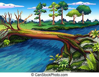 río, árbol, algas