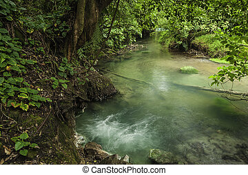 río, celeste-borbollone