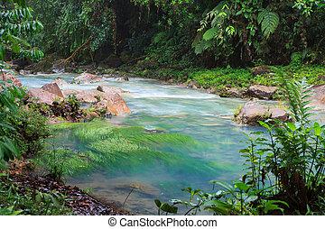 río, celeste, vegetación