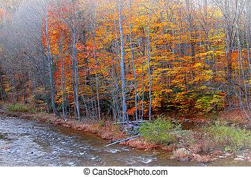 río, colorido, árboles