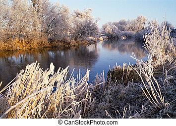 río, congelado, árboles, cañas