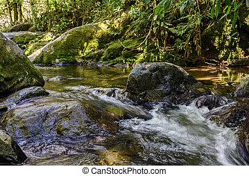 río, entre, rocas