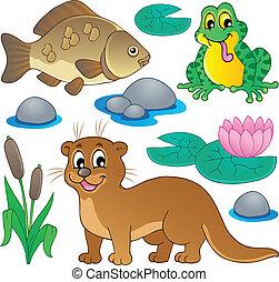 río, fauna, colección, 1