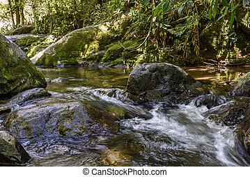 río, rocas