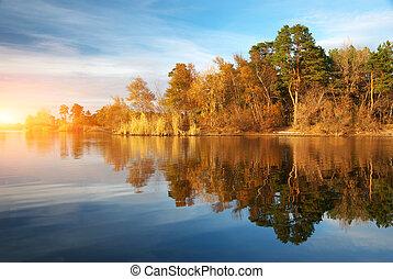 río, y, bosque de otoño