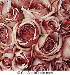 róża, beżowe tło