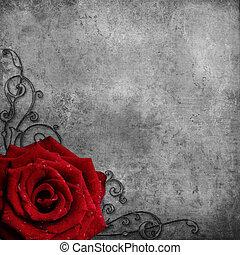 róża, grunge, struktura, czerwony