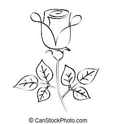 róża, kaligrafia, sylwetka, czarnoskóry