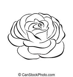 róża, wektor, ikona