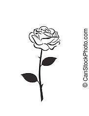róża, wektor, kwiat, ikona