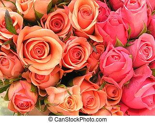 róże, łóżko