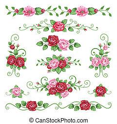 róże, zbiór