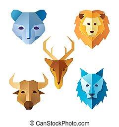różny, głowa, zwierzęta