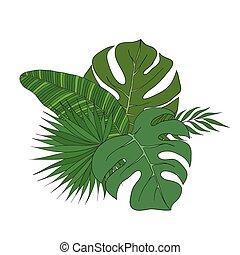różny, komplet, drzewa., liście, dłoń, gatunek