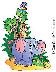 różny, sprytny, afrykanin, zwierzęta, 1