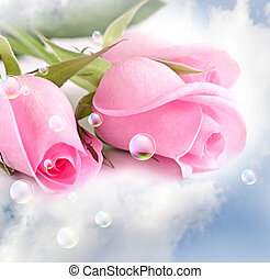 różowe róże, chmury