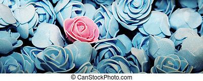 różowy, błękitny, dużo, róże, róża, sam