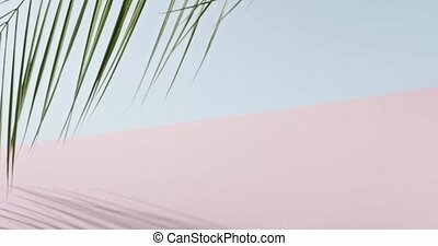 różowy, błękitny, powolny, pełny, zielony, gładki, liście, drzewo, cienie, długi, tropikalny, tło., dotykanie, duotone, dłoń, hd, gałąź, branch., video, 240fps, ruch
