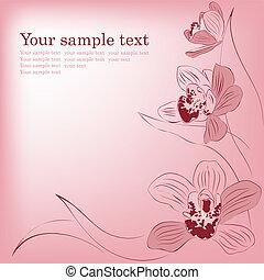 różowy, card., powitanie, flowers., wektor, storczyk