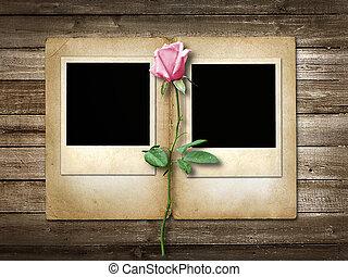 różowy, drewniany, róża, polaroid-style, tło, fotografia