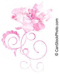 różowy kwiat, odizolowany, krzywe, akwarela, ilustracja, biały