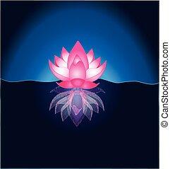 różowy, lotosowy kwiat, szablon