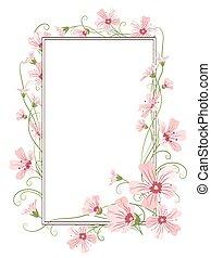 różowy, ułożyć, łyszczec, szablon, kwiaty, brzeg