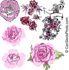 rózsa, állhatatos, rajz