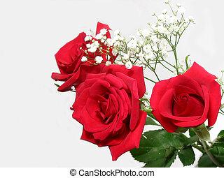 rózsa, csokor