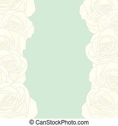 rózsa, fehér, határ
