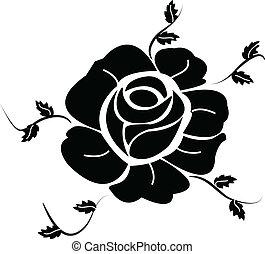 rózsa, fekete