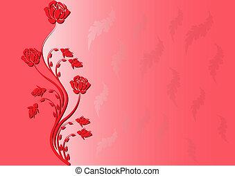 rózsa, háttér