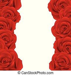 rózsa, határ, piros