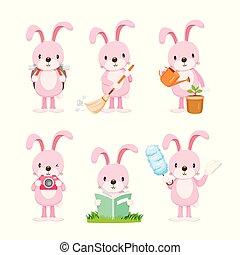 rózsaszínű, állhatatos, üregi nyúl, akciók